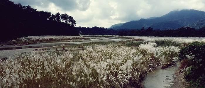 Photo by Mr. Kartik Kundu Advocate