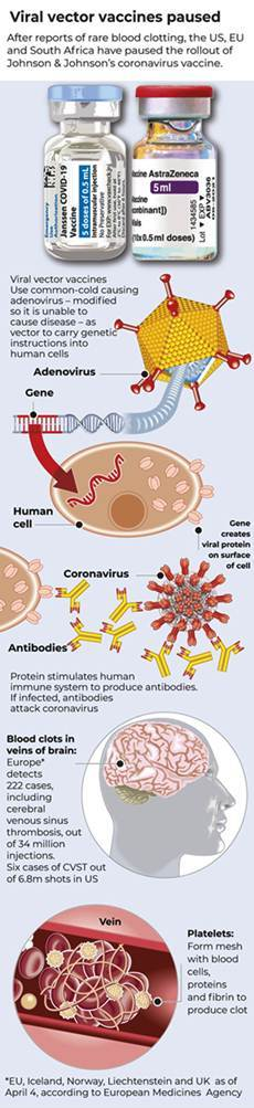 Graphic-Vector-virus-vaccines