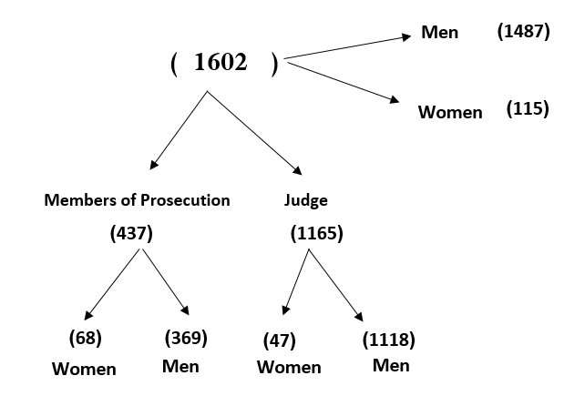 Judges in iraq